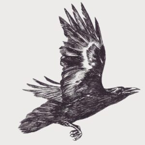 crow-fablestitch